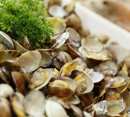 ittiko-gastronomia-pesce-22