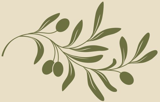 Vector vintage Decorative olive branch